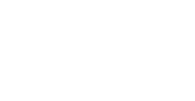 Light Factory Nyx Logo